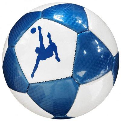 Voetbal size 5 Blauw/Wit leder PANINI