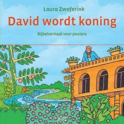 David wordt koning - kartonboekje